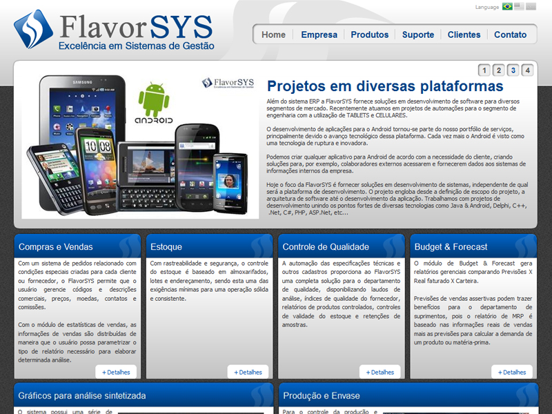 Site institucional criado para software house